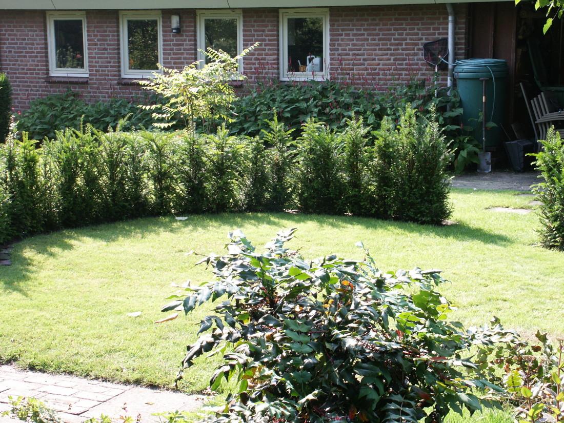 de Buitenkamer tuinontwerp, Grave, tuin met organische vormen Schaijk 2