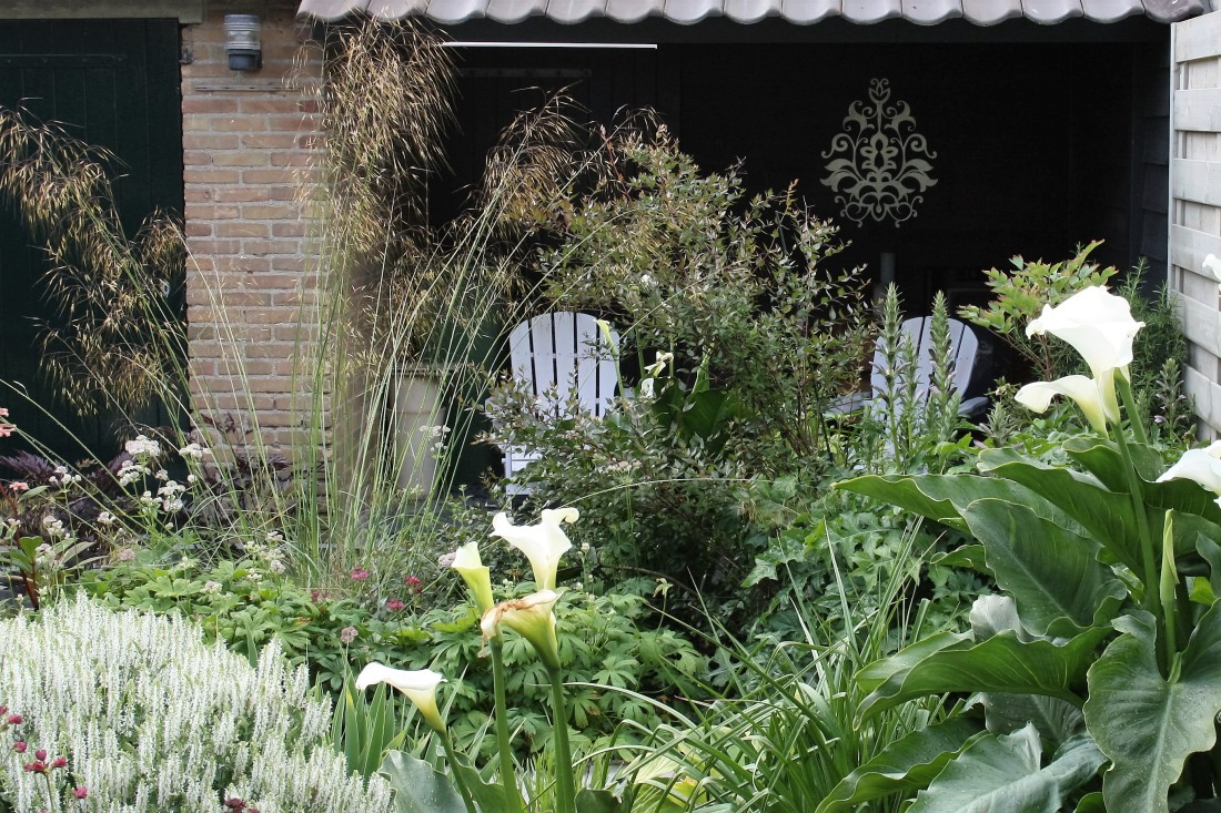 De Buitenkamer tuinontwerp, Grave. weelderige tuin in Grave 6
